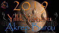 Akrep Burcu 2019 Yorumları, 2019 Akrep Burcu Aşk ve Para